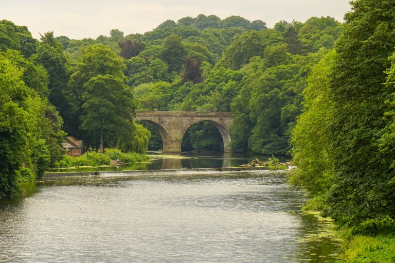 Stone bridge over wide river flanked by trees