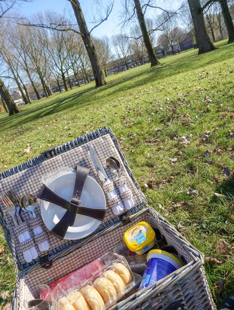picknick basket in a field