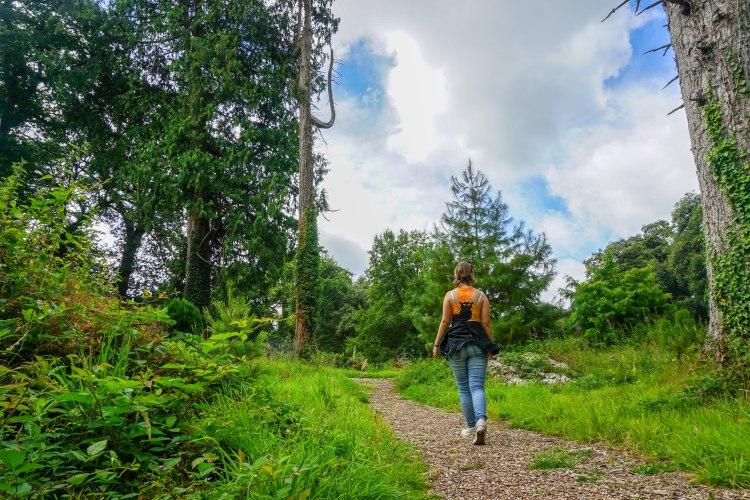 girl hiking in the woods near blarney castle