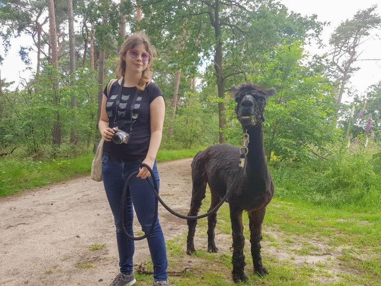 Beleefboerderij Heijerhof, Netherlands, girl poses with alpaca in the forest