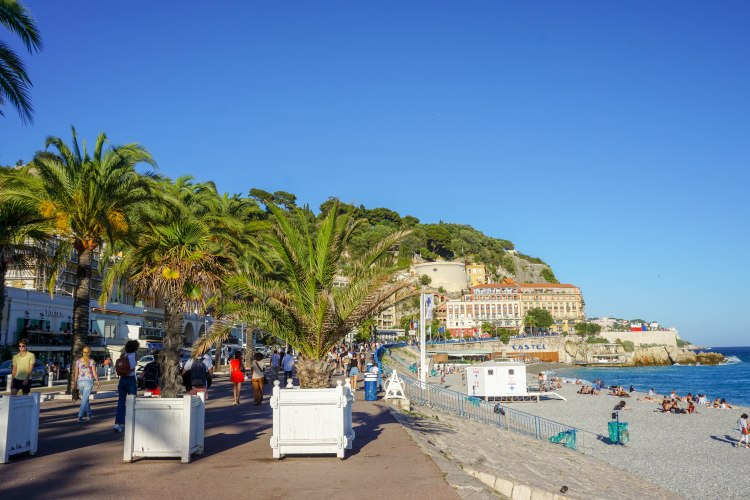 Palmtrees and sea in Nice, France